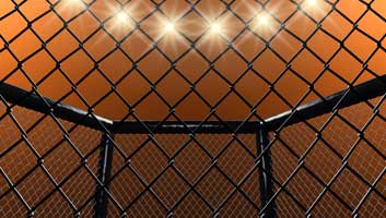 Cage fighting at schools